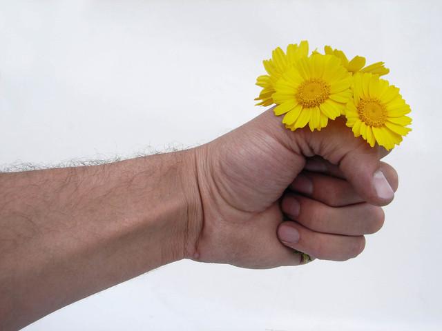 Mužská ruka, kvety